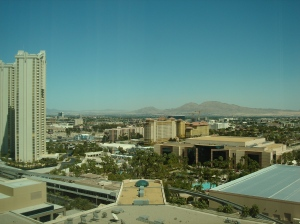view from our room on 22nd floor at MGM