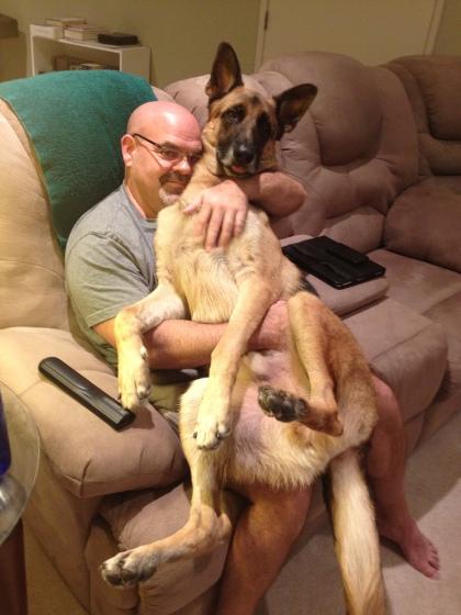 オイラ、愛玩犬でござる
