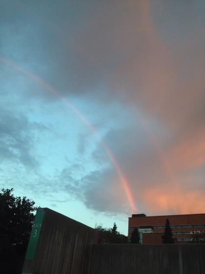 初めて見た早朝の虹