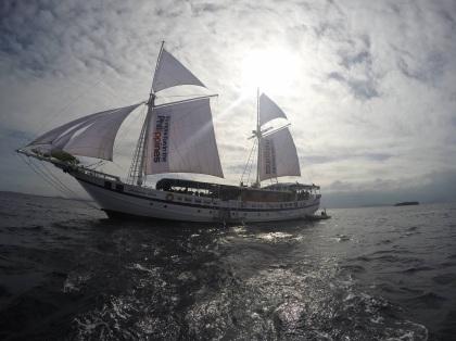 Siren Fleet (front)