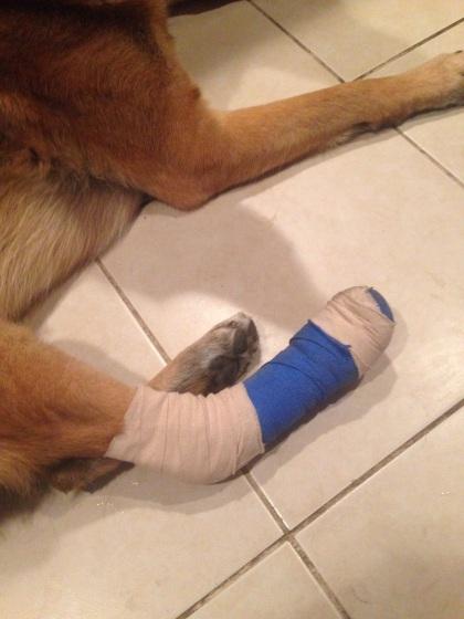 怪我の予防の為の包帯
